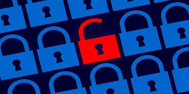 Cybersecurity: the final competitive advantage